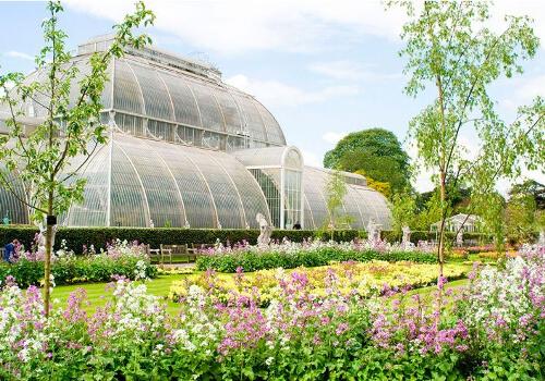 main2 - The Botanical Kew Gardens Afternoon Tea Menu